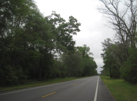 North Florida Road